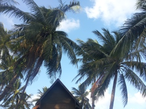 Coconut trees above the charming little bar on the beach in Koh Samui.