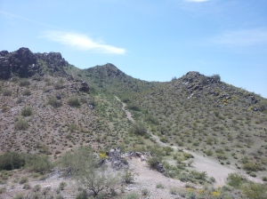 This is the desert of Arizona.