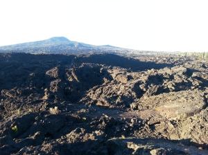 Eastern Oregon Lava Flats